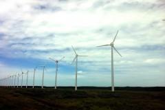 ズラリと並ぶ風車